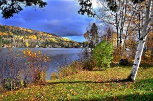 autumn-landscape-1790150_640